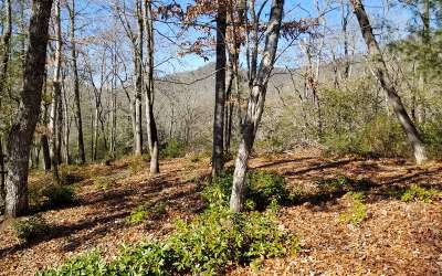 Hayesville Residential Lots & Land For Sale: Lt 1+ Hadley Lane