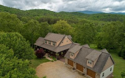 Blairsville Single Family Home For Sale: 145 Meadow Bluff
