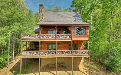 Mineral Bluff Single Family Home For Sale: 16 Mid Mountain Road
