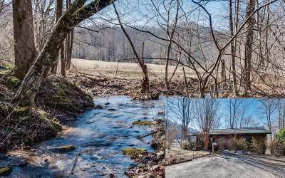Hayesville Single Family Home For Sale: 2917 Gribble Edwards Road
