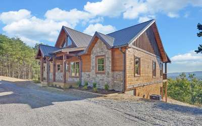 Ellijay Single Family Home For Sale: 1695 Talona Mountain Road