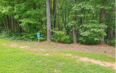 Ellijay Residential Lots & Land For Sale: Lt 76 Doll Mountain Rd