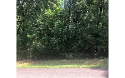 Ellijay Residential Lots & Land For Sale: Lt 4 Country Hills Road