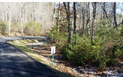 Fannin County Residential Lots & Land For Sale: Lt 16 Rustic Trail Lot 16