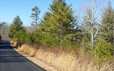 Fannin County Residential Lots & Land For Sale: Lot23 Rustic View Lot 23