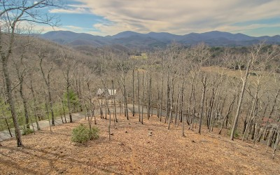 Blairsville Single Family Home For Sale: 379 Choestoe Lane