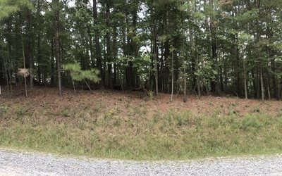 Ellijay Residential Lots & Land For Sale: L3025 Francis Way
