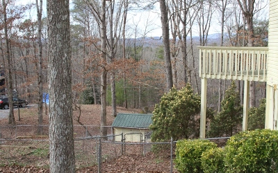 Ellijay Single Family Home For Sale: 92 N Pine Road