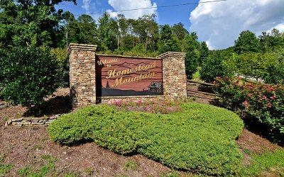 Ellijay Residential Lots & Land For Sale: Lt 34 Homestead Mountain
