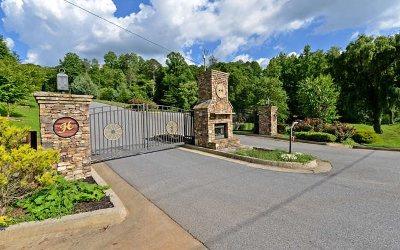 Ellijay Residential Lots & Land For Sale: Lt 46 Homestead Mountain