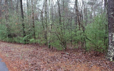 Ellijay Residential Lots & Land For Sale: Tonto Drive - Lt 540