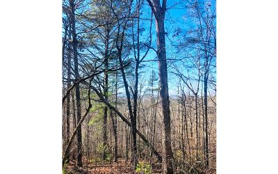 Ellijay Residential Lots & Land For Sale: 707 Aeries Court