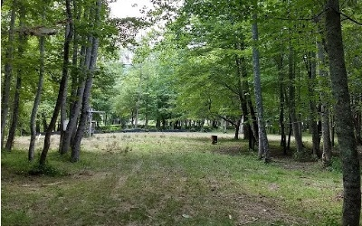 Blairsville Residential Lots & Land For Sale: 139 Cold Spring Lane