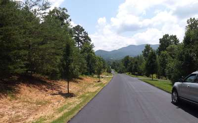 Blairsville Residential Lots & Land For Sale: Ray Drive