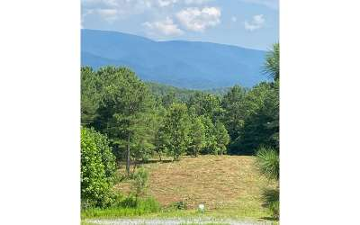 Ellijay Residential Lots & Land For Sale: L E10 Reece Mountain Road