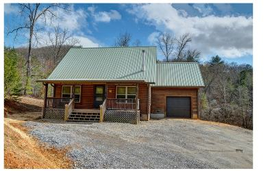 Cherokee County Single Family Home For Sale: 2605 Carter Cove Rd
