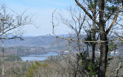 Ellijay Residential Lots & Land For Sale: Lt36 Onyx Circle