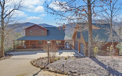 Blairsville Single Family Home For Sale: 236 Flat Rock Ridge Road