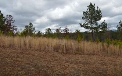 Blairsville Residential Lots & Land For Sale: Lt 67 Northshore