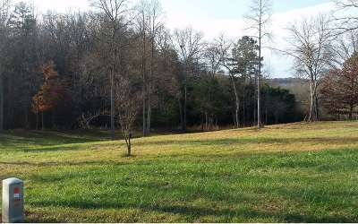 Blairsville Residential Lots & Land For Sale: Lot63 Madeline Way