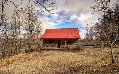 Union County Single Family Home For Sale: 642 Chestnut Cove Road