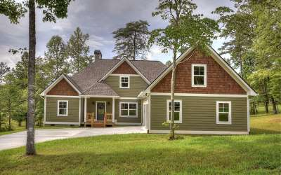 Blairsville Single Family Home For Sale: 91 Shoreline Drive