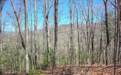 Blairsville Residential Lots & Land For Sale: Lot 1 Trail Tree Drive
