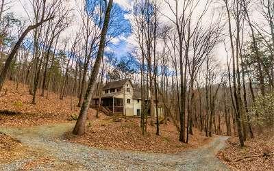 Ellijay Single Family Home For Sale: 843 Fern Valley