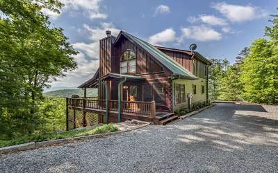 Blue Ridge Single Family Home For Sale: 493 Lower Prince Mtn Rd