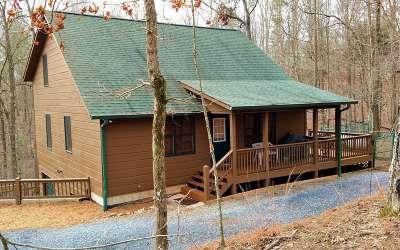 Ellijay Single Family Home For Sale: 68 Gunite Court