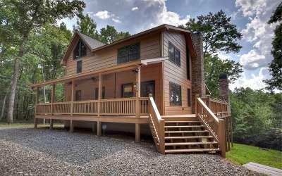 Mineral Bluff Single Family Home For Sale: 206 Stuart Ridge Road