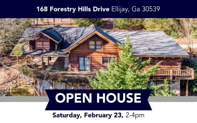 Ellijay Single Family Home For Sale: 168 Forestry Hills Dr