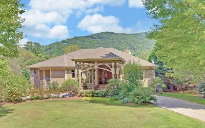 Hiawassee Single Family Home For Sale: 4697 Arrowhead Road