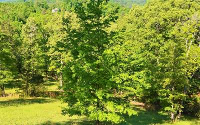 Mineral Bluff Residential Lots & Land For Sale: S Williamstown Ridge