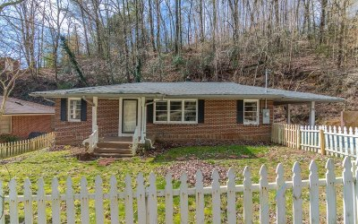 Ellijay Single Family Home For Sale: 73 Logan Lane