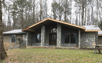 Ellijay Single Family Home For Sale: 7551 B Boardtown Road