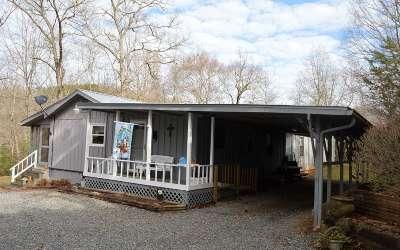 Hiawassee Single Family Home For Sale: 1656 Bearmeat Creek Road