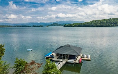Hiawassee Single Family Home For Sale: 1955 Island View Drive