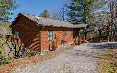 Fannin County Single Family Home For Sale: 111 Tom Tom Tr