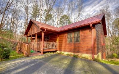 Ellijay Single Family Home For Sale: 196 Glen Hollow Court