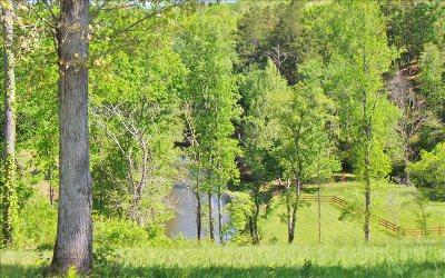 Residential Lots & Land For Sale: Lt136 Riverside Lk Nottely