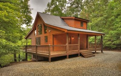 Blue Ridge Single Family Home For Sale: 59 John Dick Overlook