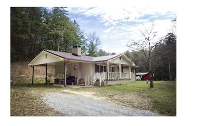 Cherokee County Single Family Home For Sale: 685 McDonald Road