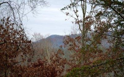 Fannin County Residential Lots & Land For Sale: .72 Salem & Highland
