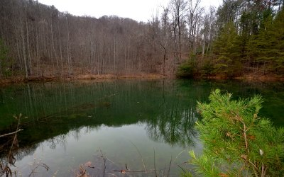 Blue Ridge Residential Lots & Land For Sale: 20 Ac Ritchie Creek