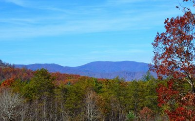 Blue Ridge Residential Lots & Land For Sale: 5.8 Cashes Valley