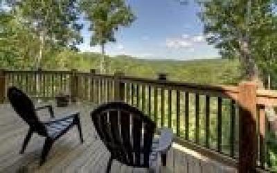 Blue Ridge Single Family Home For Sale: 139 Trina Lane