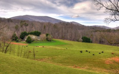 Gilmer County Single Family Home For Sale: 53 New Liberty Trail