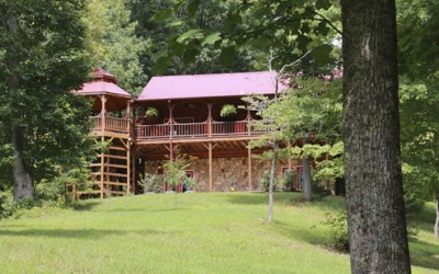 Cherokee County Single Family Home For Sale: 462 Lightning Bug Lane