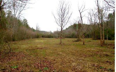 Residential Lots & Land For Sale: 7.61 Depot Lane